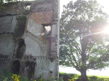 17. Dangan Castle