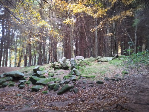 04. Kilmashogue Wedge Tomb, Co. Dublin