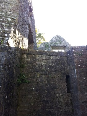 19. Bective Abbey, Co. Meath