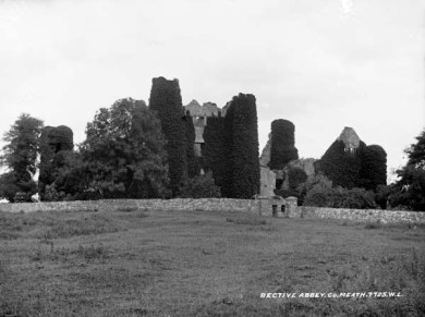 68. Bective Abbey, Co. Meath
