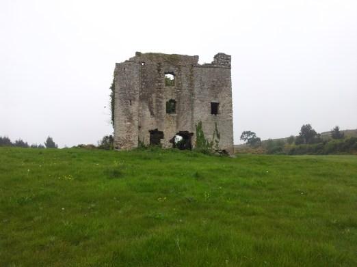 01. Puck's Castle, Rathmichael, Co. Dublin