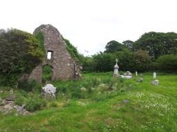 03. Old Kilteale Church, Co. Laois.