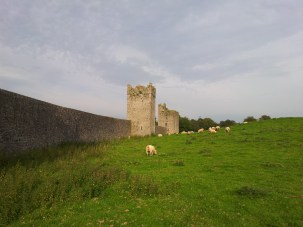 07. Kells Priory, Co. Kilkenny