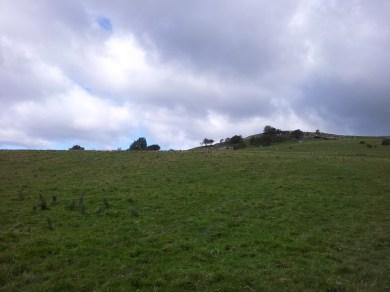 12. Knockastia, Co. Westmeath
