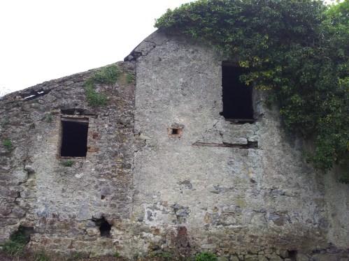 14. House beside Old Kilteale Church, Co. Laois.