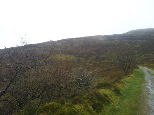 29. Carrowkeel Meglithic Cemetery, Co. Sligo
