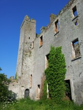 32. Athcarne Castle, Co. Meath