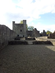 19. The Priory of St. John the Baptist, Co. Meath