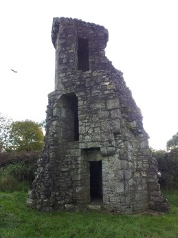 26. The Priory of St. John the Baptist, Co. Meath