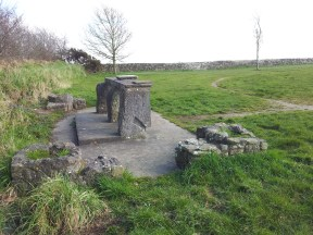 17. Spire of Llyod & Paupers Graveyard, Co. Meath