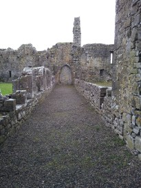 38. Athassel Priory, Co. Tipperary