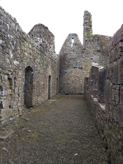 46. Athassel Priory, Co. Tipperary