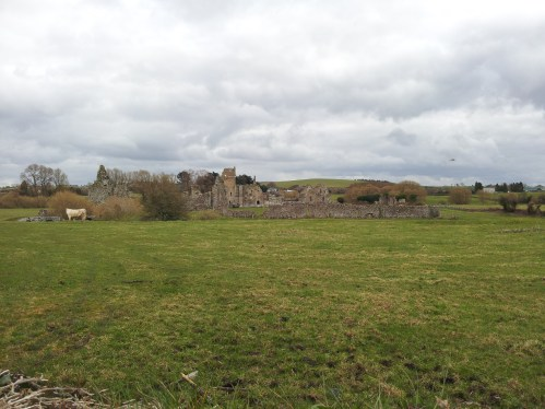 48. Athassel Priory, Co. Tipperary