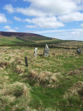 04. Boleycarrigeen Stone Circle, Co. Wicklow