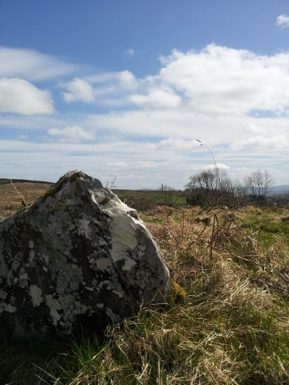 14. Boleycarrigeen Stone Circle, Co. Wicklow