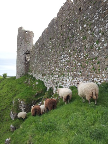 38. Castleroche Castle, Co. Louth