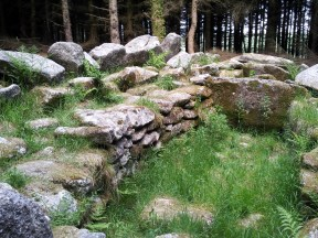 05. Ballyedmonduff Wedge Tomb, Co. Dublin