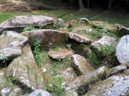 10. Ballyedmonduff Wedge Tomb, Co. Dublin