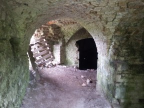 14. Moydrum Castle, Co. Westmeath