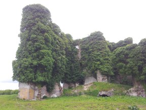 16. Moydrum Castle, Co. Westmeath
