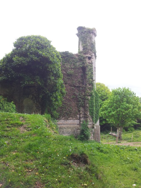 17. Moydrum Castle, Co. Westmeath