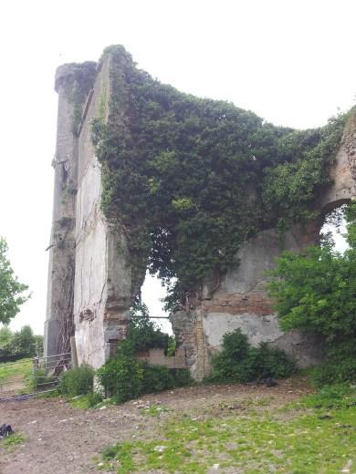 20. Moydrum Castle, Co. Westmeath