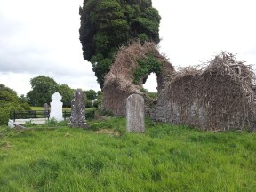 08. Old Downings Church, Co. Kildare