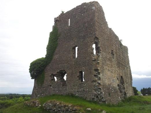 01. Carrick Castle, Co. Kildare