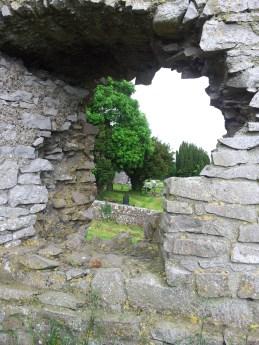 07. Carrick Castle, Co. Kildare