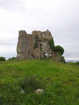 08. Carrick Castle, Co. Kildare