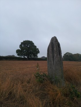 02. Ardristan Standing Stone, Co. Carlow