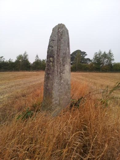 06. Ardristan Standing Stone, Co. Carlow