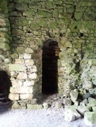 06. Ballyloughan Castle, Co. Carlow