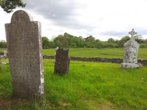 21. Abbeyshrule Abbey, Co. Longford