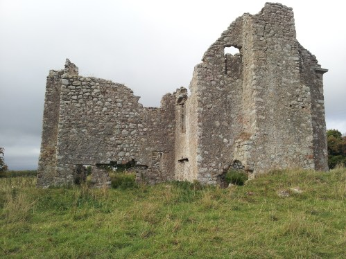 26. Ballyloughan Castle, Co. Carlow