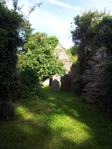 13. Killadreenan Church, Co. Wicklow