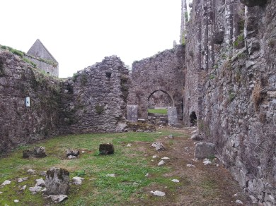 16. Bridgetown Priory, Co. Cork