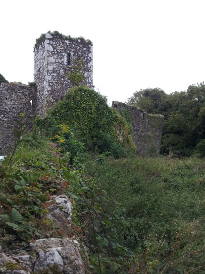 32. Bridgetown Priory, Co. Cork