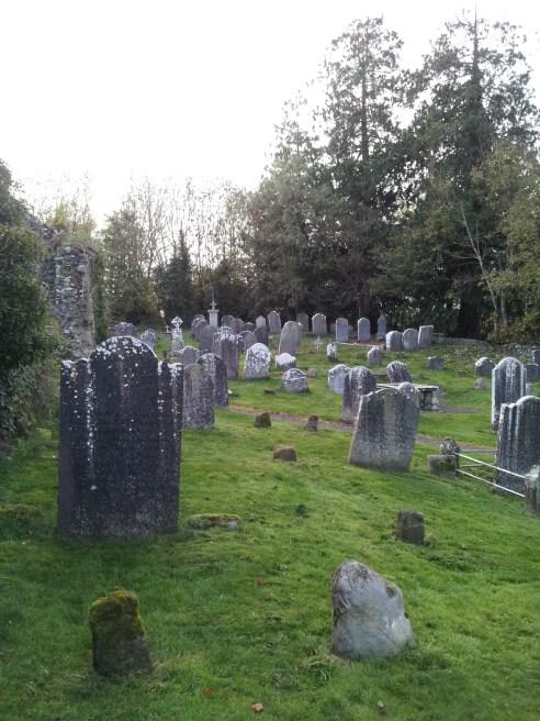 04. Dunleckny Churches, Co. Carlow
