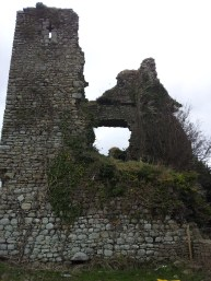 05. Clonmore Castle, Co. Carlow