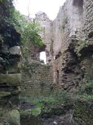 11. Clonmore Castle, Co. Carlow