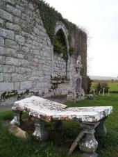 13. Dunleckny Churches, Co. Carlow