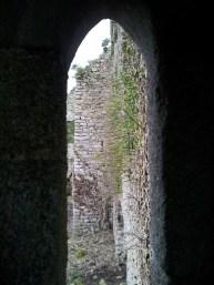 14. Clonmore Castle, Co. Carlow