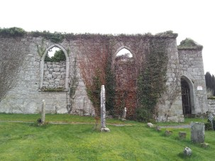 14. Dunleckny Churches, Co. Carlow