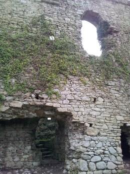 16. Clonmore Castle, Co. Carlow