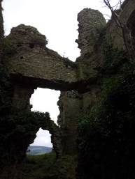 20. Clonmore Castle, Co. Carlow