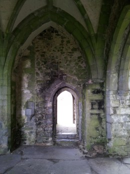 21. Kilcooley Abbey, Co. Tipperary