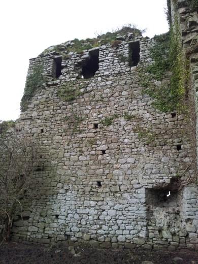 27. Clonmore Castle, Co. Carlow