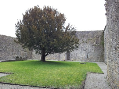 28. Kilcooley Abbey, Co. Tipperary