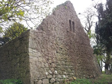 31. Dunfierth Church, Co. Kildare